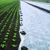 Termo agrotekstil, zaštita od mraza i niskih temperatura
