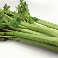 Celer Dijamant - 10.000 sjemena