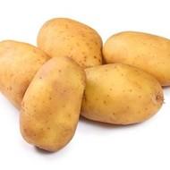 Krumpir Cleopatra 35/45 sjeme za 25kg