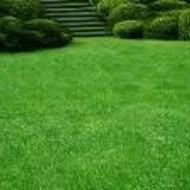 Zeogravel-prirodni zeolit za vegetaciju