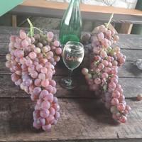 Bijelo vino Kerner