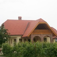 Vinogradi OPG-a Grudić