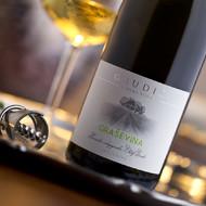 Vina koja proizvodimo nagrađivana su na hrvatskom i svjetskim tržištima