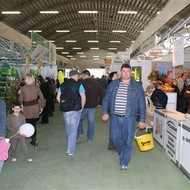 Bjelovarski sajam i Poljoprivredni glasnik