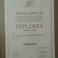 Medjunarodne diplome i medalje