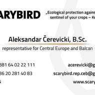 Scarybird