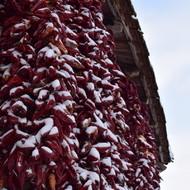 Zima u Donjoj Lokosnici 2017