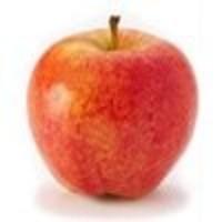 Sadnica jabuke - Slavonska srčika