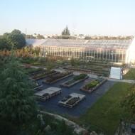 Vrtni centar Jug, Osijek